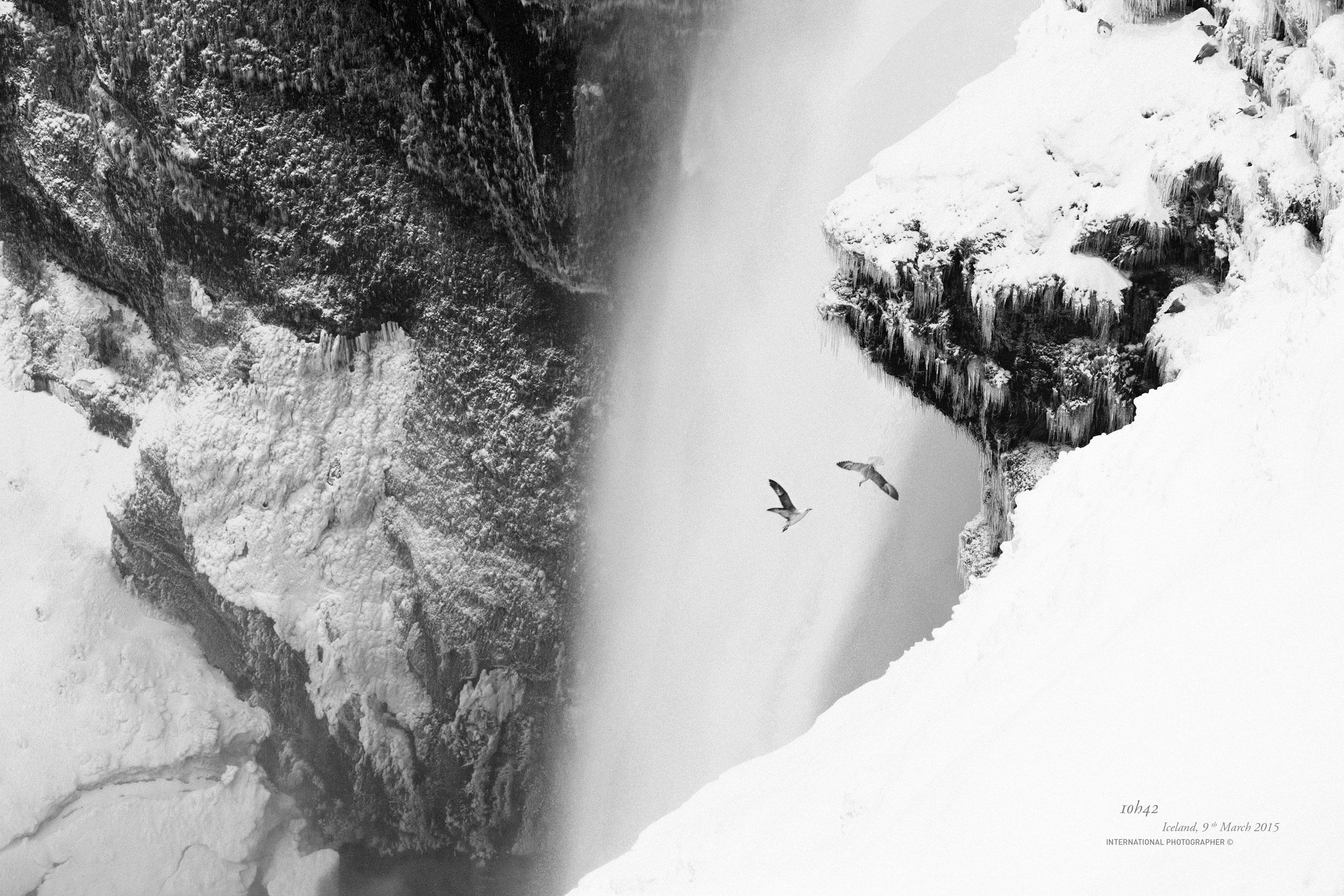 Un couple d'oiseau devant la chute Skogafoss